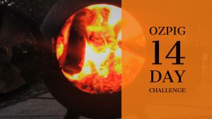 Ozpig 14 day challenge